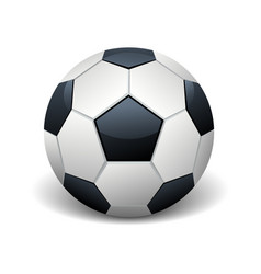 realistic soccer ball isolated white vector image vector image