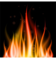 abstract fire background element for design eps10 vector image