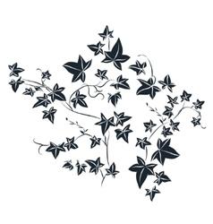 Black doodle ivy leaves vector image