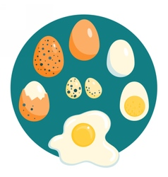 Chicken and quail eggs raw boiled fried vector