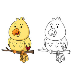 educational coloring book -bird vector image