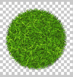 Grass circle 3d green plant grassy round field vector