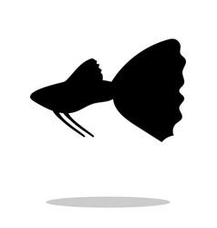 guppy fish black silhouette aquatic animal vector image