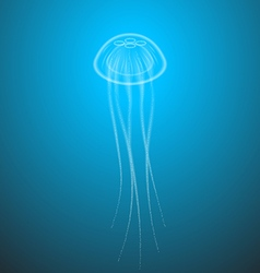 Marine life jellyfish with tentacles transparent vector image