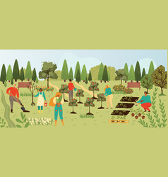 Plants and people gardening harvesting fruits on vector