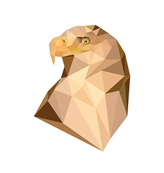 polygonal royal eagle vector image