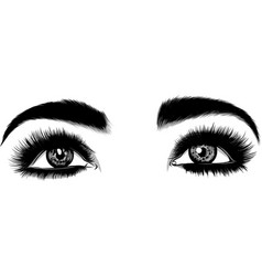 beautiful women eyes with make vector image
