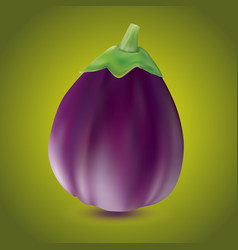 Eggplant or aubergine vegetable isolated on white vector