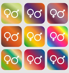 male and female icon Nine buttons with bright vector image