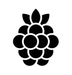Raspberry icon thanksgiving related vector