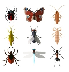 set insect flat icons vector image