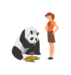 Zoo worker feeding panda bear eating carrot vector