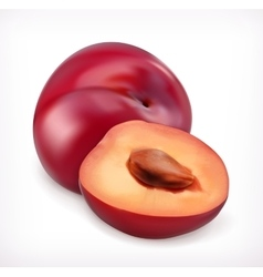 Plums icon vector image vector image
