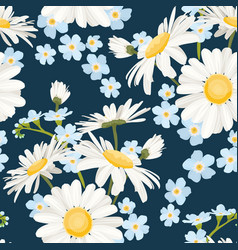 daisy chamomile and forget-me-not field meadow vector image