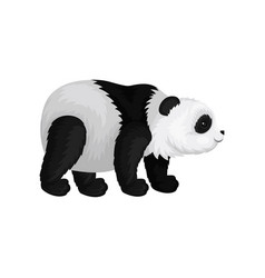 Flat icon standing fluffy panda side view vector
