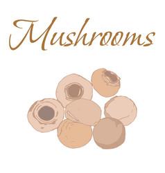 tasty veggies mushrooms vector image