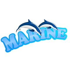 marine dolphins vector image vector image