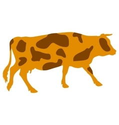 Silhouettes of spotted cow vector image