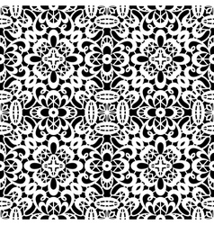 White lace texture vector image vector image