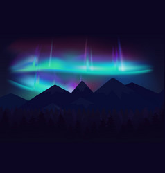 Beautiful northern lights aurora borealis vector