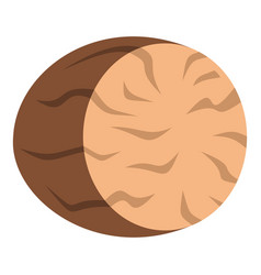 Brown half of nutmeg icon isolated vector