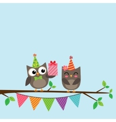 Couple of owls card vector image