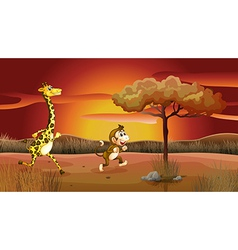 Sunset giraffe monkey vector image