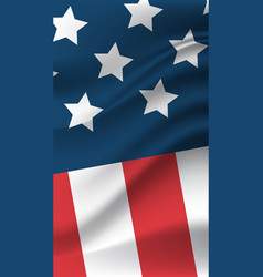 united states flag american independence day vector image
