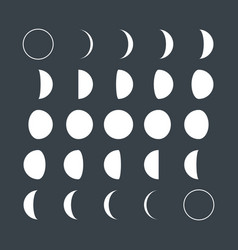 lunar phases vector image