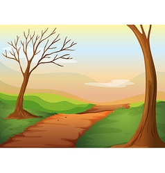 Lonely road in beautiful nature vector image vector image