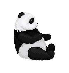 Flat of cute sitting panda vector