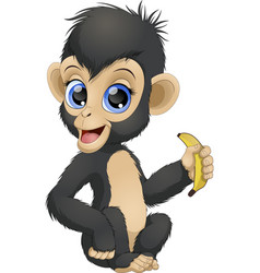 Funny monkey with banana vector