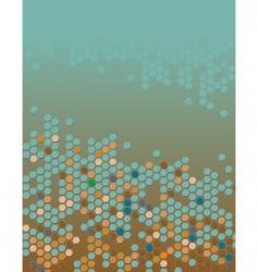 hexagons vector image