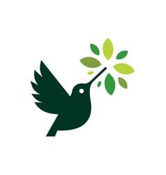 Hummingbird colibri leaf tree logo icon vector