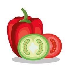 Peper and tomato fresh vector