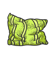 rumpled old pillow sketch vector image