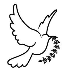 Symbol of dove olive branch vector