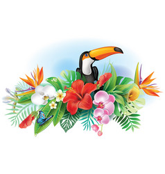 toucan and tropical flowers vector image