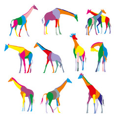 set of colorful silhouettes of giraffes vector image vector image