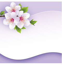 Greeting or invitation card with branch of sakura vector image