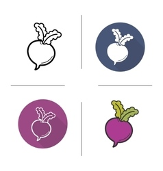 Beetroot flat design linear and color icons set vector image vector image