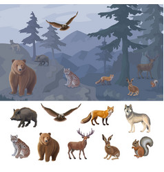 Cartoon colorful forest animals set vector