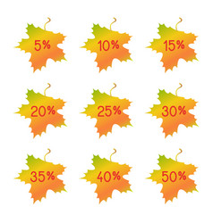 autumn discount elements - maple leaves vector image