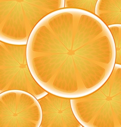 Citrus orange background vector image