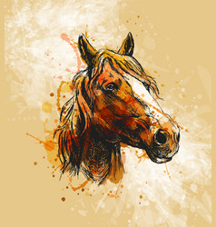 colored hand sketch horse head vector image