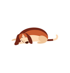 cute beagle dog sleeping on floor isolated vector image