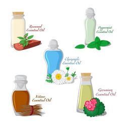 Essential oils part 2 vector
