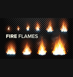 fire flames set different animation stages vector image