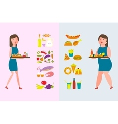 Healthy and Fatty Food vector