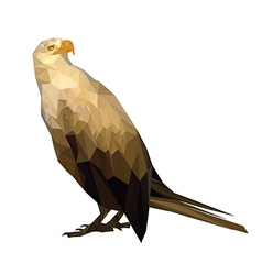 royal eagle vector image